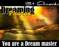 Dreaming - Photos