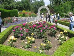 VanDusen Botanical Gardens