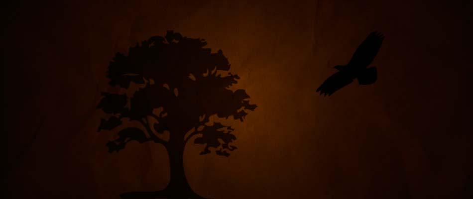 Tree Mohawk