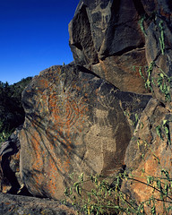 Perry Mesa Rock Art
