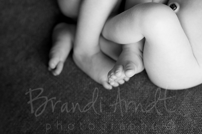 Edmonton Newborn Twin Photographer ©Brandi Arndt Photography