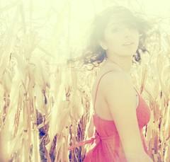 Crash into me (Rowena R) Tags: sunlight turn movement cornfield r rowena hairflip