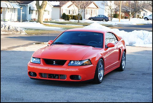 Comp Orange Terminator Photoshoot Forums At Modded Mustangs