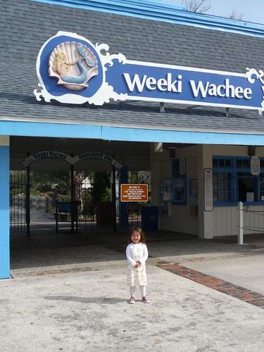 weeki wachee state park.
