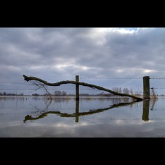 SuspenSion (Hans van Reenen) Tags: sky reflection fence river flood fav50 nederland thenetherlands meadow weiland waal rivier dodewaard betuwe k7 uiterwaarde hoogwater outermarches andelst 20100311