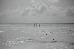 Camminata d'argento / Walking in silver (AndreaPucci) Tags: sea sun beach reflections women mare donne zanzibar lowtide sole riflessi spiaggia bassa marea canoneos400 bassamarea minimalistart uroa canonefs55250f456is andreapucci