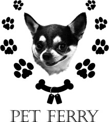 pet ferry apparels carriers