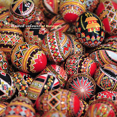 traditional easter eggs - bucovina (Bazalai) Tags: art motif composition painting easter design artwork symbol artistic drawing geometry decorative patterns painted traditional egg craft ornament ou romania eggs geometrical colourful ostern ornamental technique coloured pske semanasanta eggshell decorated roumanie pasqua motives pques hsvt velikonoce simbol uskrs bucovina rumnien paintedeggs romnia bukowina desen    fotographia bunavestire romnesc pictat mariusvasiliu terradesign bazalai bucovine pati pate   ou art pashkt oudepati ncondeiat nchistrit compoziie tehnic meteug tradiie fundumoldovei