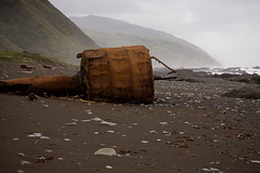 Old bouy washed up on shore Photo