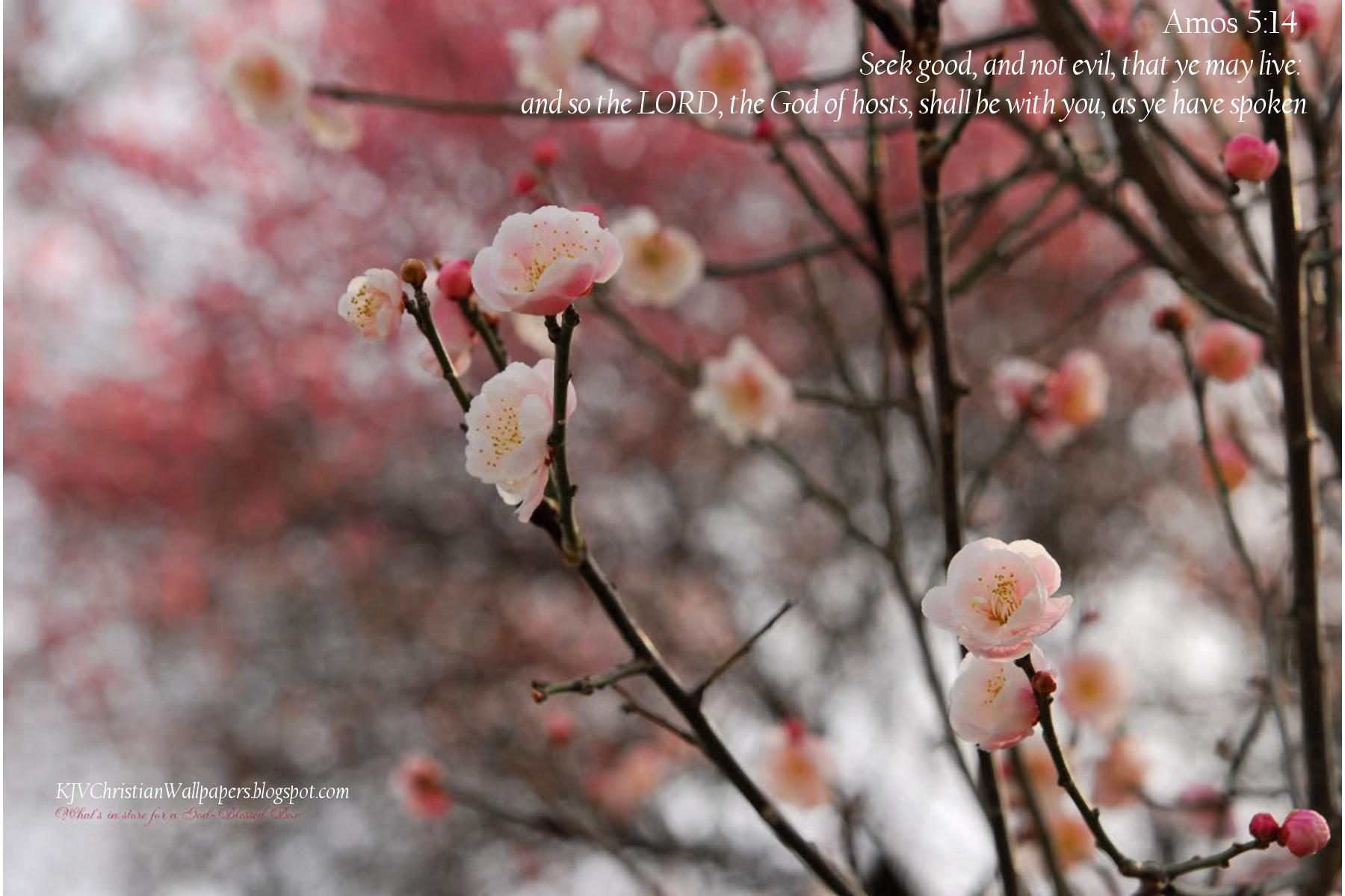 Spring10-06
