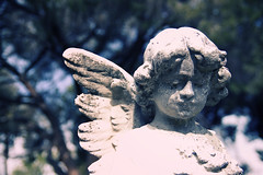 her look (Maureen Bond) Tags: ca trees light sunlight face statue angel wings eyes bright watching weathered lookingover maureenbond