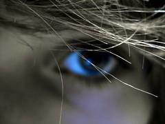 Look. (KyyDizzle) Tags: blue eye love look hair pain intense focus outoffocus picnik kyydizzle