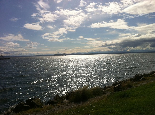 The view from the Olympic Sculpture Park, Seattle