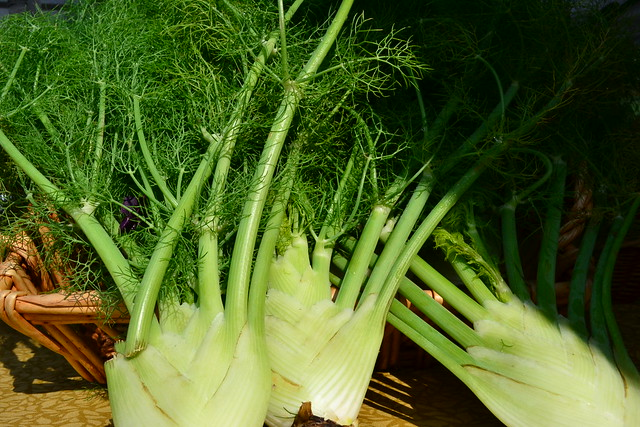 Fennel Trio