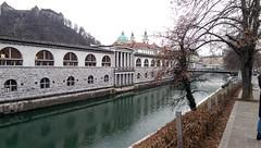 Ljubljana (ivicabobičanec) Tags: ljubljana ljubljanica slovenia river