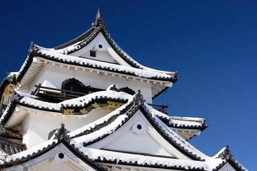 彦根城8・Hikone Castle