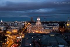 Madrid #bluehour #longexposure #longexpo #madrid #cibeles #pirulí #circulobellasartes #cartrails #tripod #ayuntamiento #nikon #nikon7100 #nikkoe1685 #lowlight (Madalena Boigues) Tags: nikon cibeles longexpo longexposure madrid circulobellasartes bluehour pirulí tripod cartrails ayuntamiento lowlight nikon7100 nikkoe1685