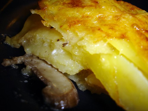 Closeup of Gratin