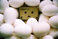 eeeeeeeeeeeeeegg (C.L.I.W) Tags: cute film face toy japanese robot egg agfavista100 nikonfm2  danbo numerous nikkor50mm14ais danboard   amazoncomjp  danbo