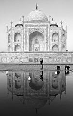 Taj Mahal (ezekam) Tags: blackandwhite india blancoynegro beautiful reflections wonder nikon expo andamio taj tajmahal espejo reflejo reflexions maravilla exposicin nikond200 maravillasdelmundo newwonders indiablackandwhite fotomasala indiablancoynegro