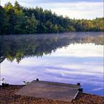 Henley Park Lake 1