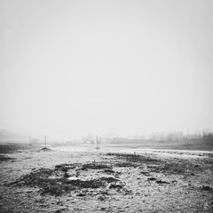- cirque - (FRJ photography) Tags: strange grass amsterdam fog sand eau post sale circus shell sable odd sombre curious shape cirque bizarre brouillard plot forme herbe intrigue coquillage curieux pôteau