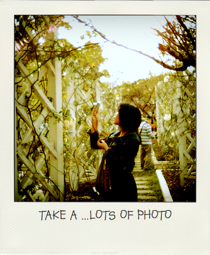09-12-13TAKE_A...LOT_OF_PHOTO.pola
