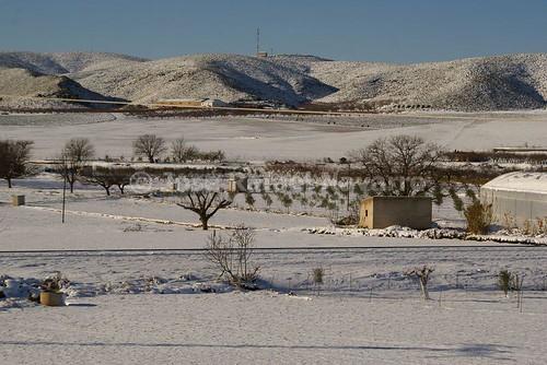 Vista de la huerta nevada