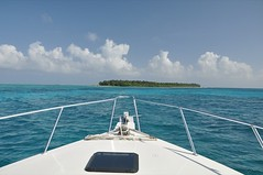 Belize 2009: Halfmoon Caye