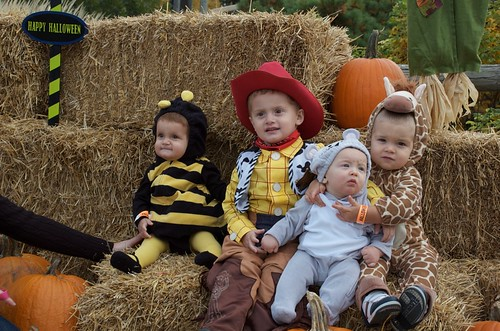 In case you can't tell...a bumble bee, Woody, a mouse and a giraffe!