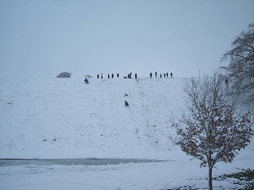 sledging hill
