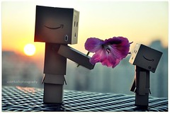 If friends were flowers, I'd pick you (Violet Kashi) Tags: japan toy robot nikon comic manga yotsuba danbo d90 revoltech   kiyohikoazuma  violetkashi