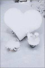 God kent alle namen.. (proudof7) Tags: winter baby snow monument cemetery sneeuw hart begraafplaats grafsteen nieuwkoop