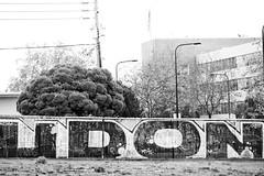 The Power of Udon (Thomas Hawk) Tags: california bw usa america graffiti berkeley udon unitedstates unitedstatesofamerica eastbay