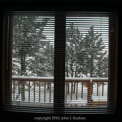 2 More Inches Today (Jobe Roco) Tags: winter snow window silhouette southdakota square outside nikon view cropped railing pinetrees 2010 custer d60 1382