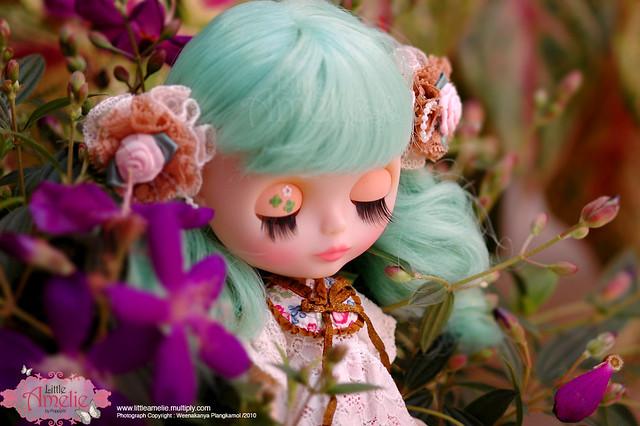 ADAD : 5/365 Flowers Sensation...