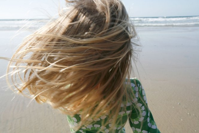 Shores3