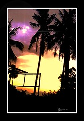 Hello iPhone, goodbye Atom O2....:) (ojie_zakaria) Tags: tree car silhouette evening mac waiting coconut garage o2 testing workshop gombak atom handphone ojie iphoneview