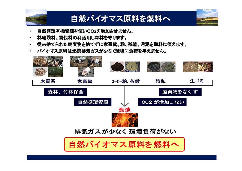 自然バイオマス原料を燃料へ 2010.3.21