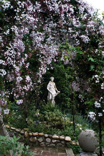 Flora and Jasmine