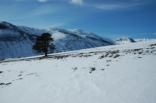 Lone Pine and Derry Cairngorm