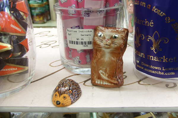 hedgehog and cat chocolate