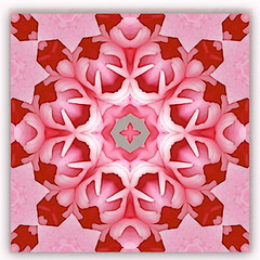 luminous spring love 4 (SueO'Kieffe) Tags: nature digital photoshop patterns kaleidoscope mandala spirituality