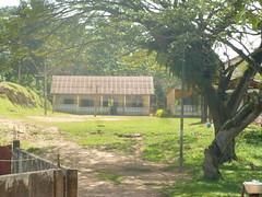 "africa 2013 487 <a style=""margin-left:10px; font-size:0.8em;"" href=""http://www.flickr.com/photos/104703188@N06/13063593045/"" target=""_blank"">@flickr</a>"