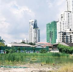 Bangkok Bird Sanctuary (Jay Kullman) Tags: 120 6x6 delete10 architecture delete9 landscape delete5 delete2 delete6 bangkok delete7 save3 delete8 delete3 delete delete4 save save2 slidefilm save4 delete11 agfaisolette