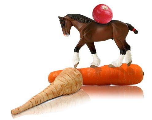 Parsnip & Horseradish Gratin