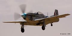 CAC Mustang