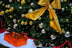 Plus_City_Dezember_2009 (17 von 35) (editor0range) Tags: christmas people weihnachten rush 2009 pasching einkaufszentrum pluscity