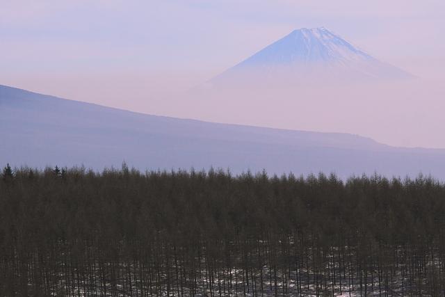 霧ヶ峰から望む富士山