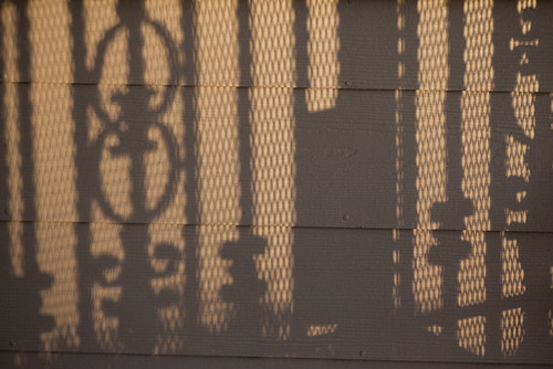 Project 365 # 30: Shadows